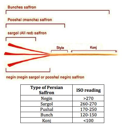 saffron-types-diagram